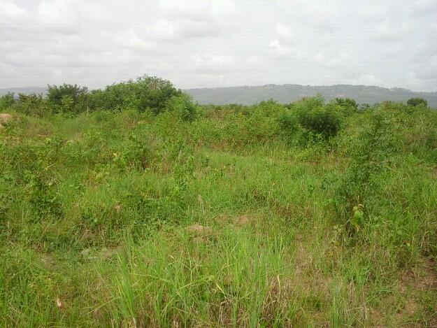 Plots For Sale In Greater Accra Eastern And Central